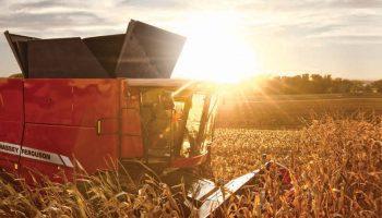 mf9505-combine-harvester